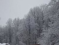 202px-snow_dubois