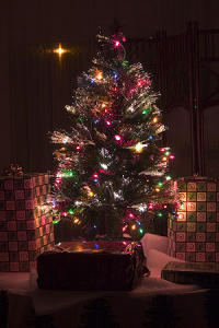 300px-fiber-optic_christmas_tree