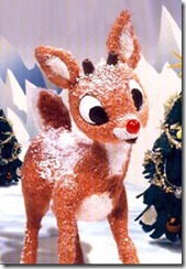 rudolph-injured-flown-to-the-university-of-virginia-gait-clinic-21