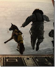Soldier Dog Vibrams