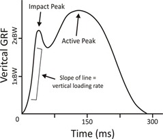 Effect of Step Rate on Lower Limb Loading in Runners
