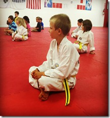 Running and Taekwondo: Adding Strength, Balance and Flexibility via Martial Arts Practice