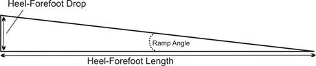 Heel Forefoot Measures
