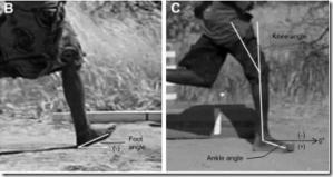 Foot Strike Patterns During Barefoot and Minimally Shod Running in Hadza Hunter-Gatherers